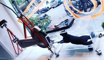 Bicycletta Disko Service
